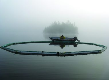 ELA boat on lake, foggy A\J AlternativesJournal.ca