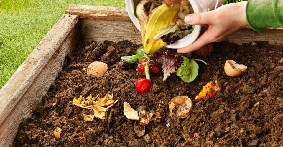 iStock_16223881_compost_jml5571