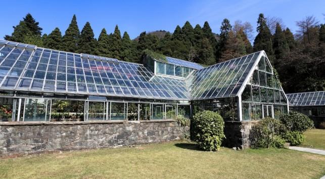Greenhouse 36311118 © chungking - Fotolia