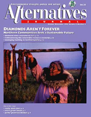 Diamonds Aren't Forever Alternatives Journal 22.4