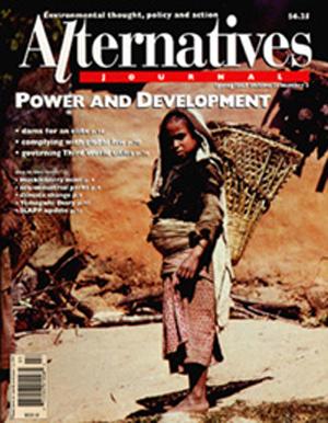 Power and Development Alternatives Journal 23.2