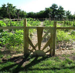 The Guelph Street Community Garden