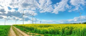 The path to renewable energy.  A\J History. Alternatives Journal.