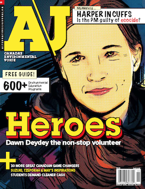 A\J Heroes issue cover. Dawn Deydey the non-stop volunteer