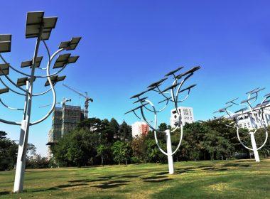 "Solar panel ""trees"""
