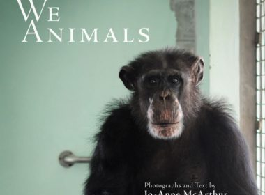 We Animals book cover, Jo-Anne McArthur, book review on A\J