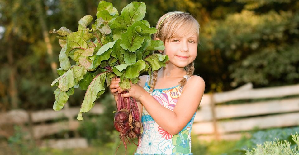 Young girl with root vegetables, learning how food is produced.