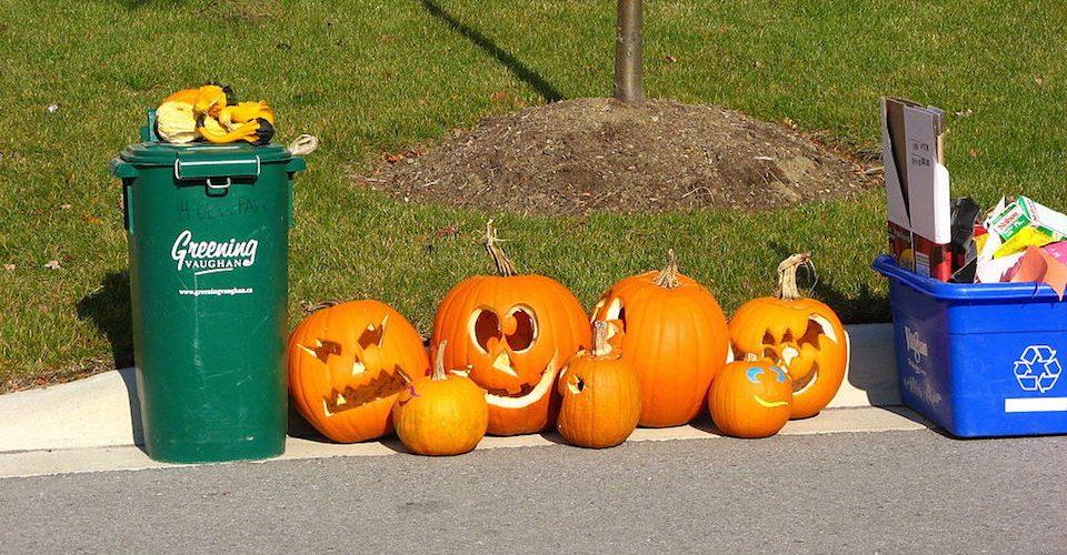 Pumpkins after Halloween by Mk2010.