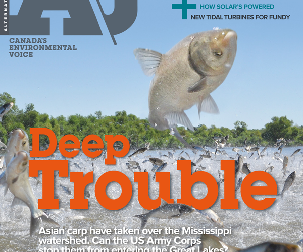 """40.5 Issue Cover – Water 2014 """"Deep Trouble"""""""