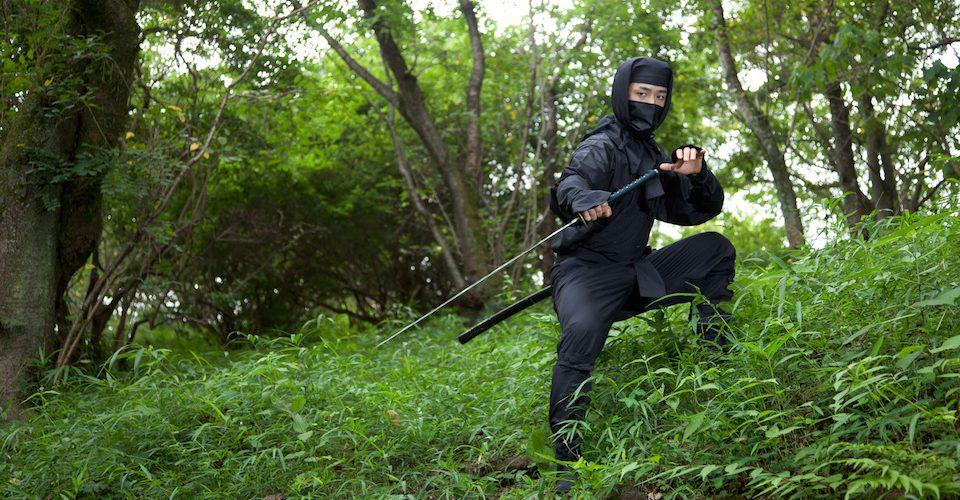 Silent but deadly ninja.