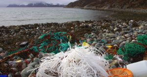 Marine litter. One winters worth. Lots of fishing gear.