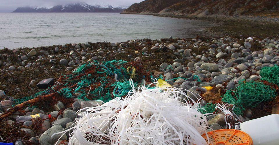 Marine litter. One winters worth. Lots of fishing gear.