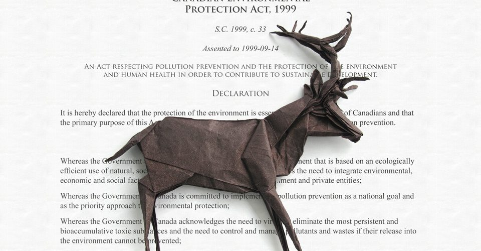 Stag on the Canadian Environmental Protection Act