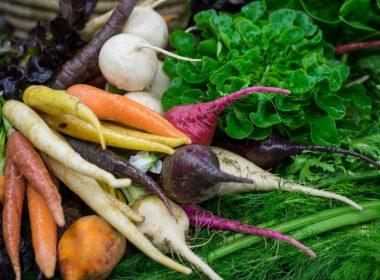 Chef's Garden Tour | Edsel Little via Flickr