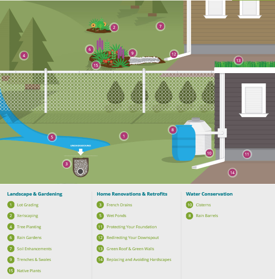 Infographic: Stormwater management techniques for your property