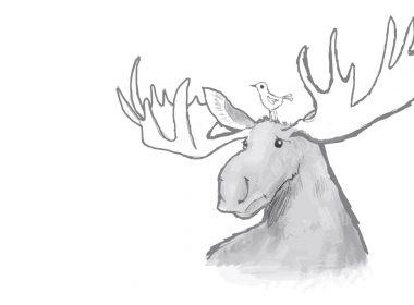 barker_moose