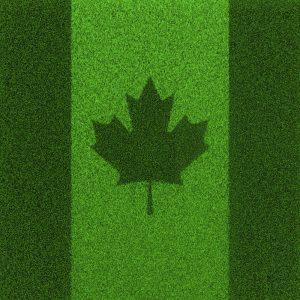 Grass flag Canada