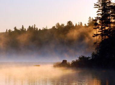 Alg Park mist © Pavel Cheiko - Fotolia