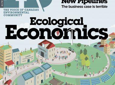 Cover 43.1 Ecological Economics