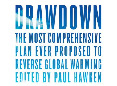 'Drawdown', edited by Paul Hawken. Penguin Books. 240 pp