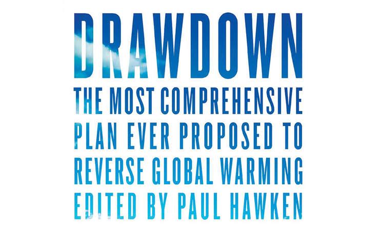 'Drawdown', edited by Paul Hawken. Penguin Books. 240 pp