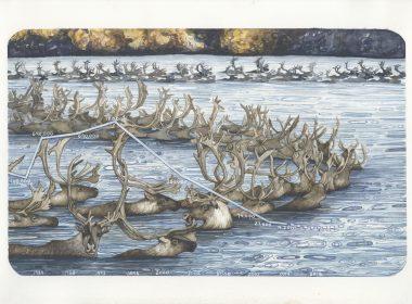 Dwindling Migration