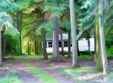 cottage in forest art