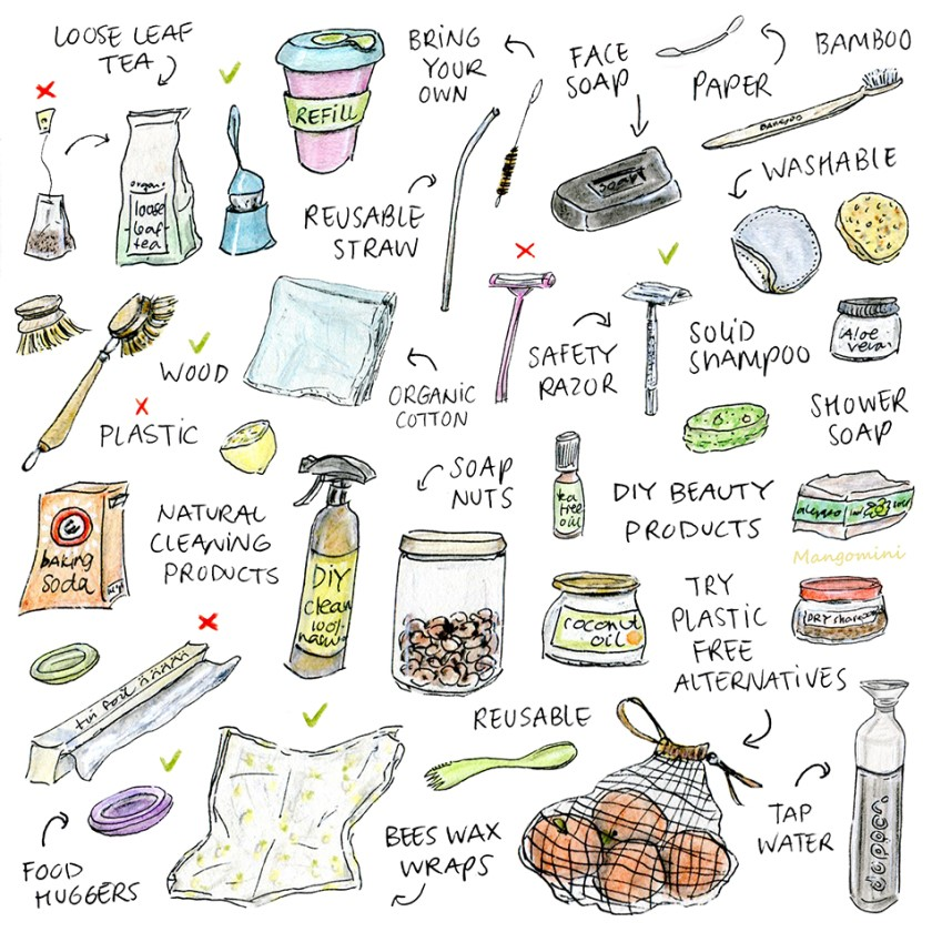 Plastic free alternatives for items we use daily
