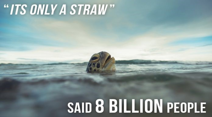 Strong and Plastic Free by Shanella Ramkissoon