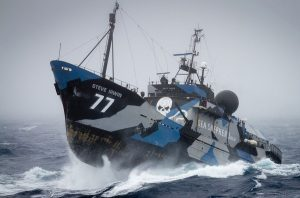 The Sea Shepherd