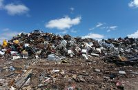 waste audit pic