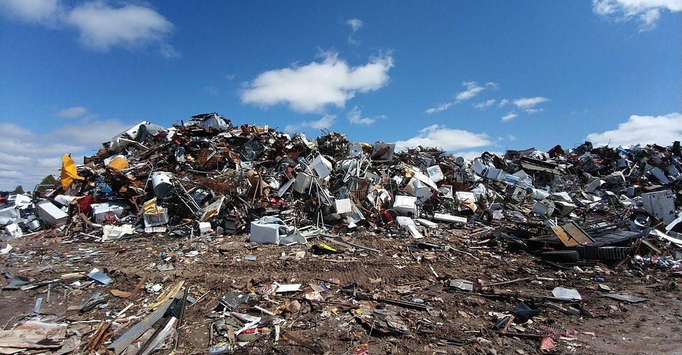 waste audit pic